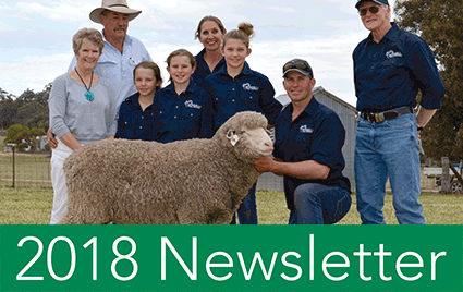 Bundilla Poll Merino NEWSLETTER 2018