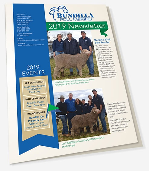 Bundilla Poll Merino Newsletter